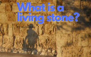 what is a living stone?